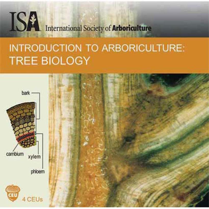 CD Training - Tree Biology *Spanish*