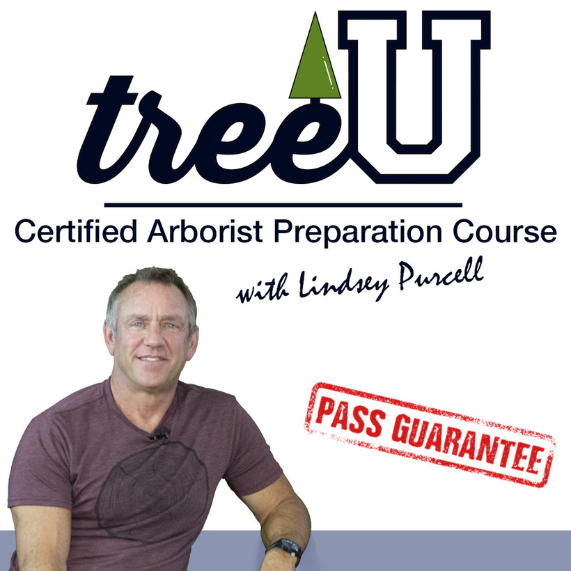 TreeU Certified Arborist Prep Course with Lindsey Purcell
