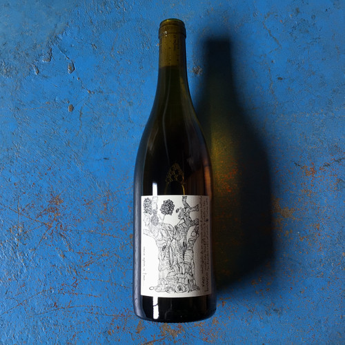 Ajola Once Upon a Time 2016 | Wayward Wines