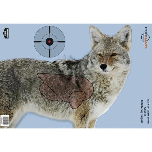 B-c Pregame Coyote Tgt 3-16.5x24