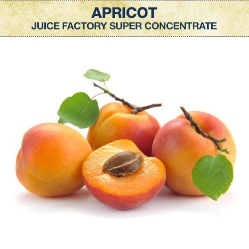 JF Apricot Super Concentrate