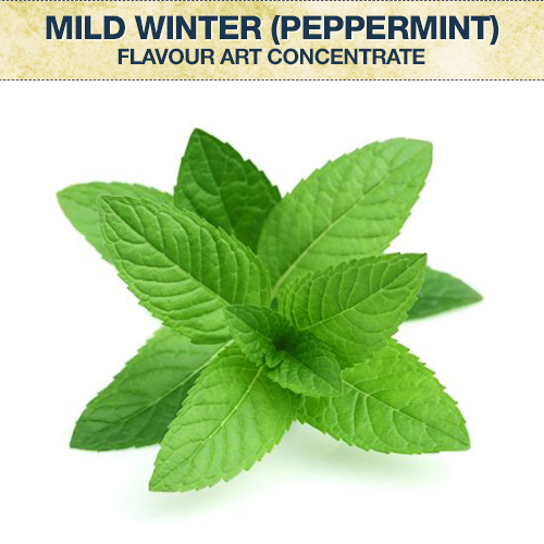 Flavour Art Mild Winter (Peppermint) Concentrate