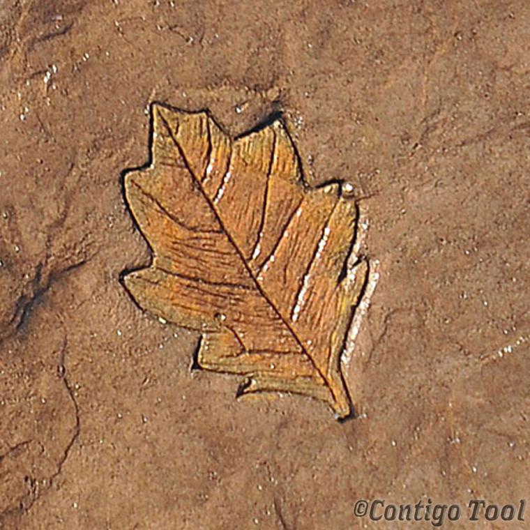 Oak Leaf Stamp