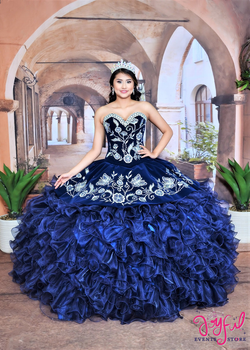 d631ea573ed Diosa Quinceanera Dresses   Vestidos de Quinceanera - Zebra and ...