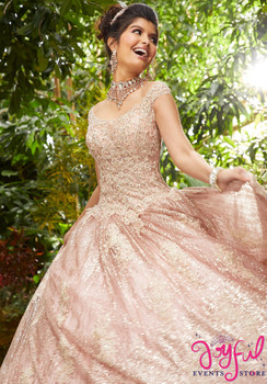 10313e9b3ae Crystal Beaded Metallic Lace Appliqués on a Patterned Glitter Net Ballgown   89243