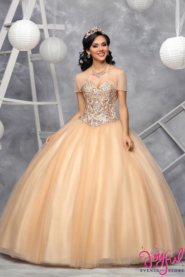 Quinceanera Dress #6