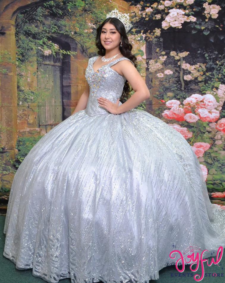 Sparkly Silver  Quinceañera  Dress  #2027