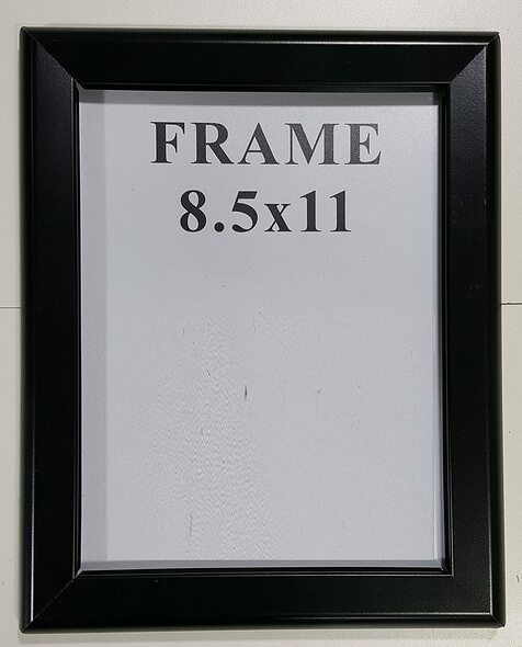 Black Snap Frame 8.5x11/Black Poster Frame