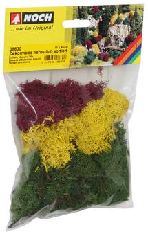 NOCH 08630 Lichen HO)autumn mix assorted, 35g bag