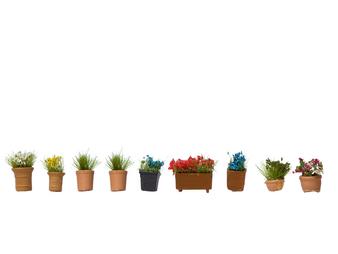 NOCH 14031 Flowers in Pots (HO)