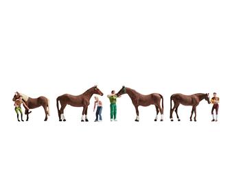 NOCH 15632 Horse Care (HO)
