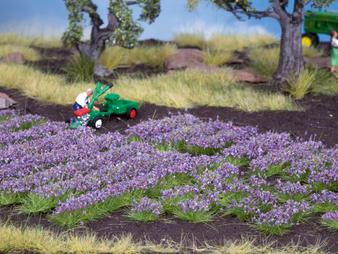NOCH 07136 Lavender (HO) 36 pieces