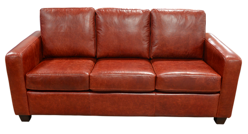 Genuine Full Grain All Leather Transitional Sofa