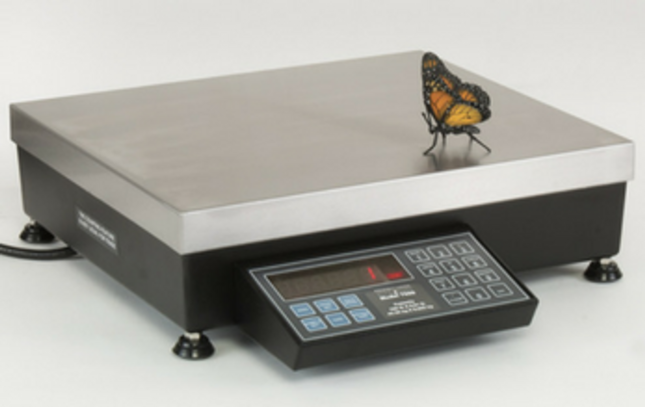 Pennsylvania 7600 counting scale