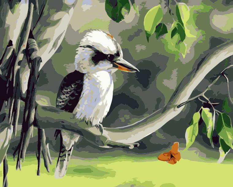 Aussie Kookaburra