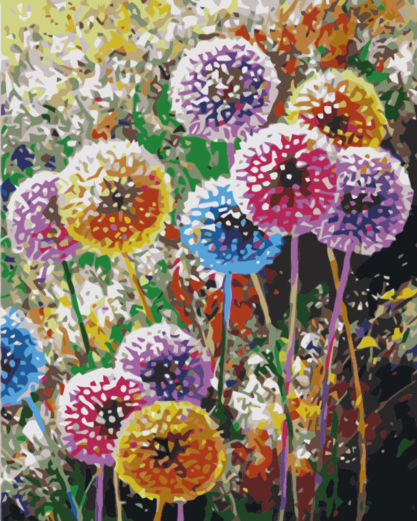Colourful Dandelion