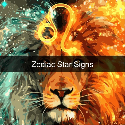 Paint by Numbers - Zodiac Star Signs