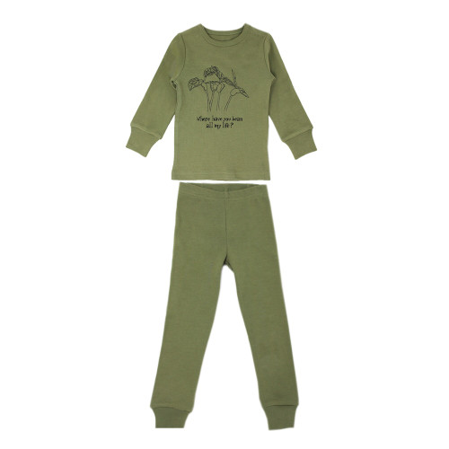 Organic Kids' L/Sleeve PJ Set in Sage Beans, Flat