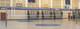 Gared Libero Collegiate Volleyball System