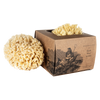 Wool Bath Sponge Small