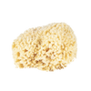 Wool Bath Sponge Large