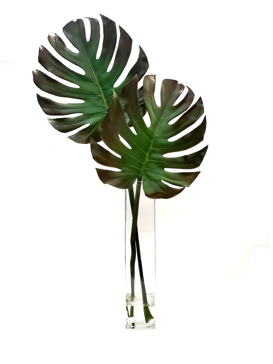 Monstera Leaves In Tall Rectangle Vase Creative Branch