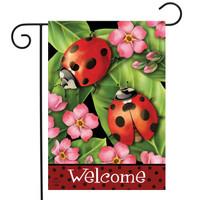 Ladybugs & Bees