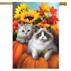 Fall Cats Floral House Flag