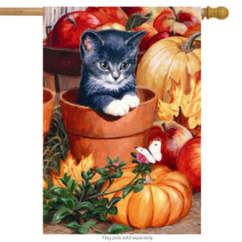 Fall Kitten House Flag