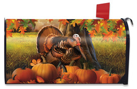 Harvest Turkey Fall Mailbox Cover