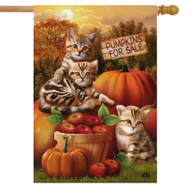 Fall Kittens Pumpkins House Flag