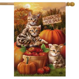 Fall Kittens Pumpkins House Flag