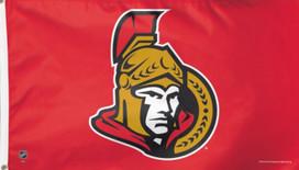 Ottawa Senators NHL Deluxe Grommet Flag