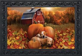 Welcome Fall Puppies Doormat