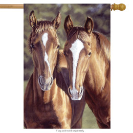 Tango & Cash Horses House Flag