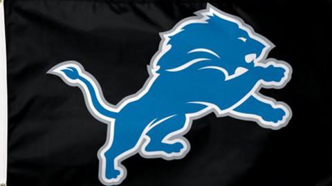 Detroit Lions NFL Deluxe Grommet Flag