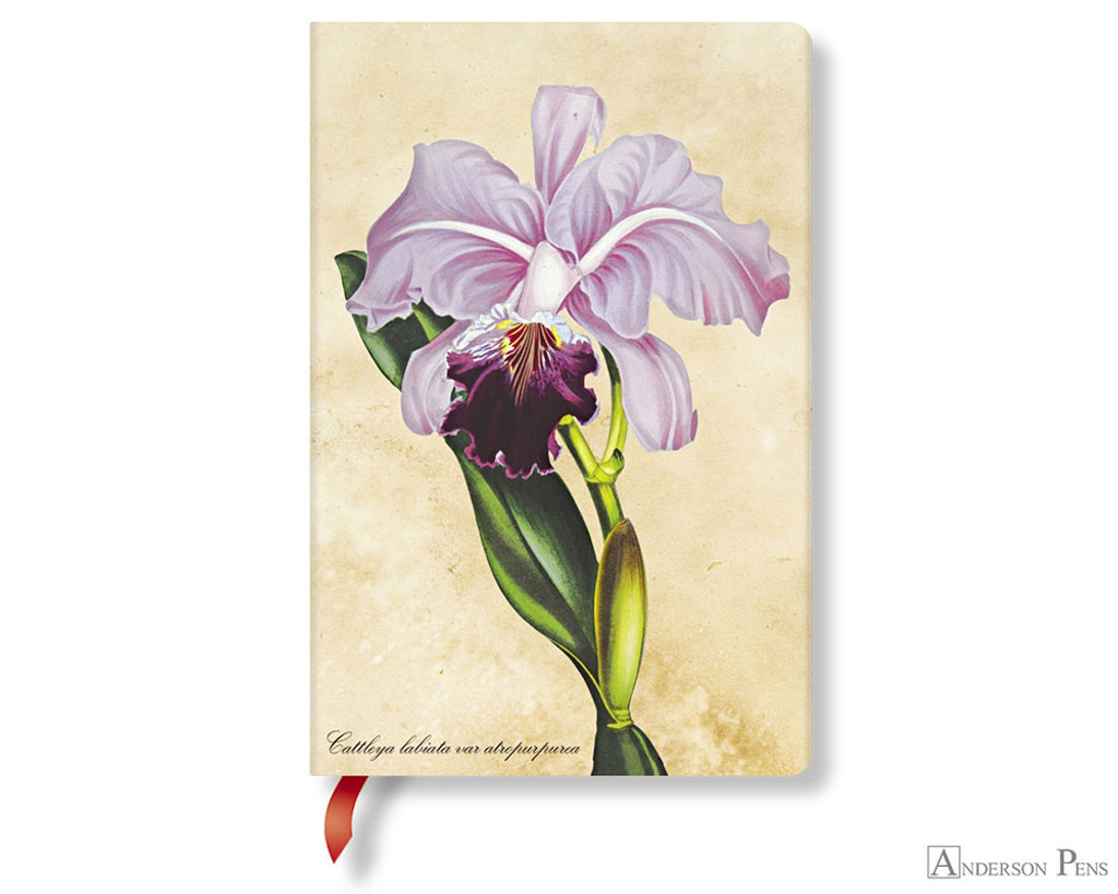 Paperblanks Mini Journal - Painted Botanicals Brazilian Orchid, Blank