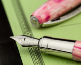 Visconti Van Gogh Fountain Pen - Souvenir de Mauves - On Notebook Nib