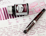 Rohrer & Klingner Alt-Bordeaux Ink (50ml Bottle) - thINK Thursday with Aurora Optima Closed