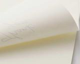 Tomoe River Notepad - A4, Blank - Cream - No Bleed