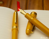 Sailor 1911 Large Fountain Pen - Pirate's Life - Beauty1