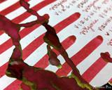 Sailor US 50 State Ink Series - Virginia (20ml Bottle) - Swab