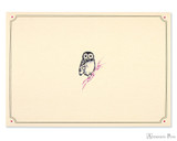 Peter Pauper Press Notecards - 5 x 3.5, Owl Portrait