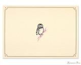 Peter Pauper Press Notecards - 5 x 3.5, Owl Portrait