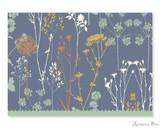 Peter Pauper Press Notecards - 5 x 3.5, Twilight Garden