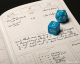 Field Notes Notebooks - 5E Gaming Character Journals (2 Pack) - Attacks and Spellcasting