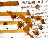 Sailor US 50 State Ink Series - Maryland Ink Sample (3ml Vial) - Writing