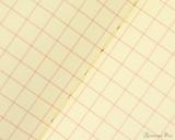 Life Vermilion Notebook - B6 (5 x 7), Graph Paper - Page Closeup