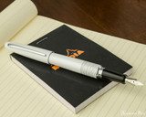 Pilot Metropolitan Fountain Pen - White Tiger - Posted on Notebook