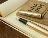Pilot Metropolitan Fountain Pen - Gold Plain - Open on Notebook